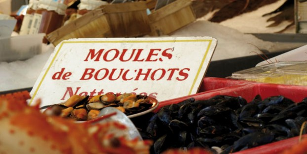 Moules bouchots - Normandy