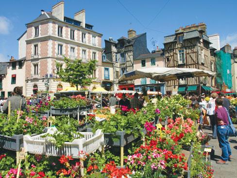 The flower market in Rennes