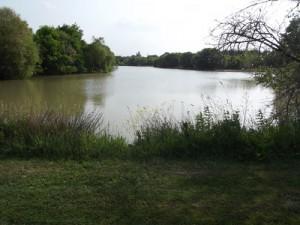 Lake at Hunters Retreat