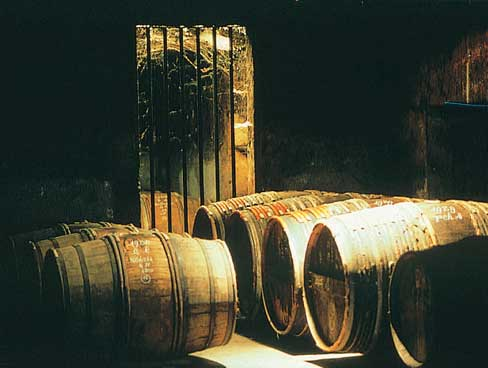 Cognac maturing in the barrel