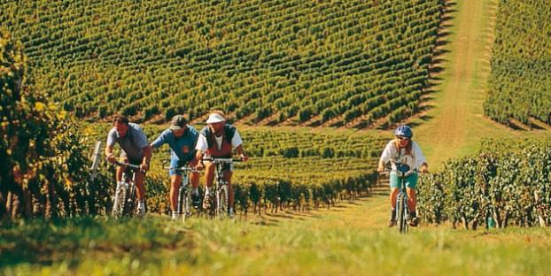Cycling in Lot et Garonne