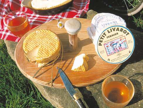 Delicious Normandy cheeses