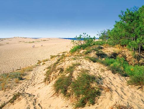 Beach nr La Palmyre