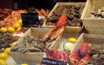 Beautiful Breton seafood