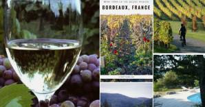 630x356-Pinterest-Pic-(Wine)